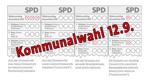 Teaser Kommunal-Wahl
